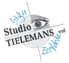 Studio Tielemans
